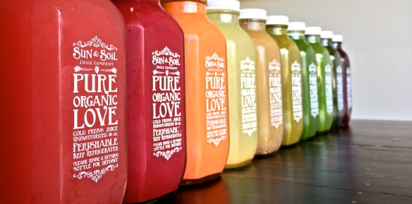 Sun and Soil Juice Company 1 Day Cleanse